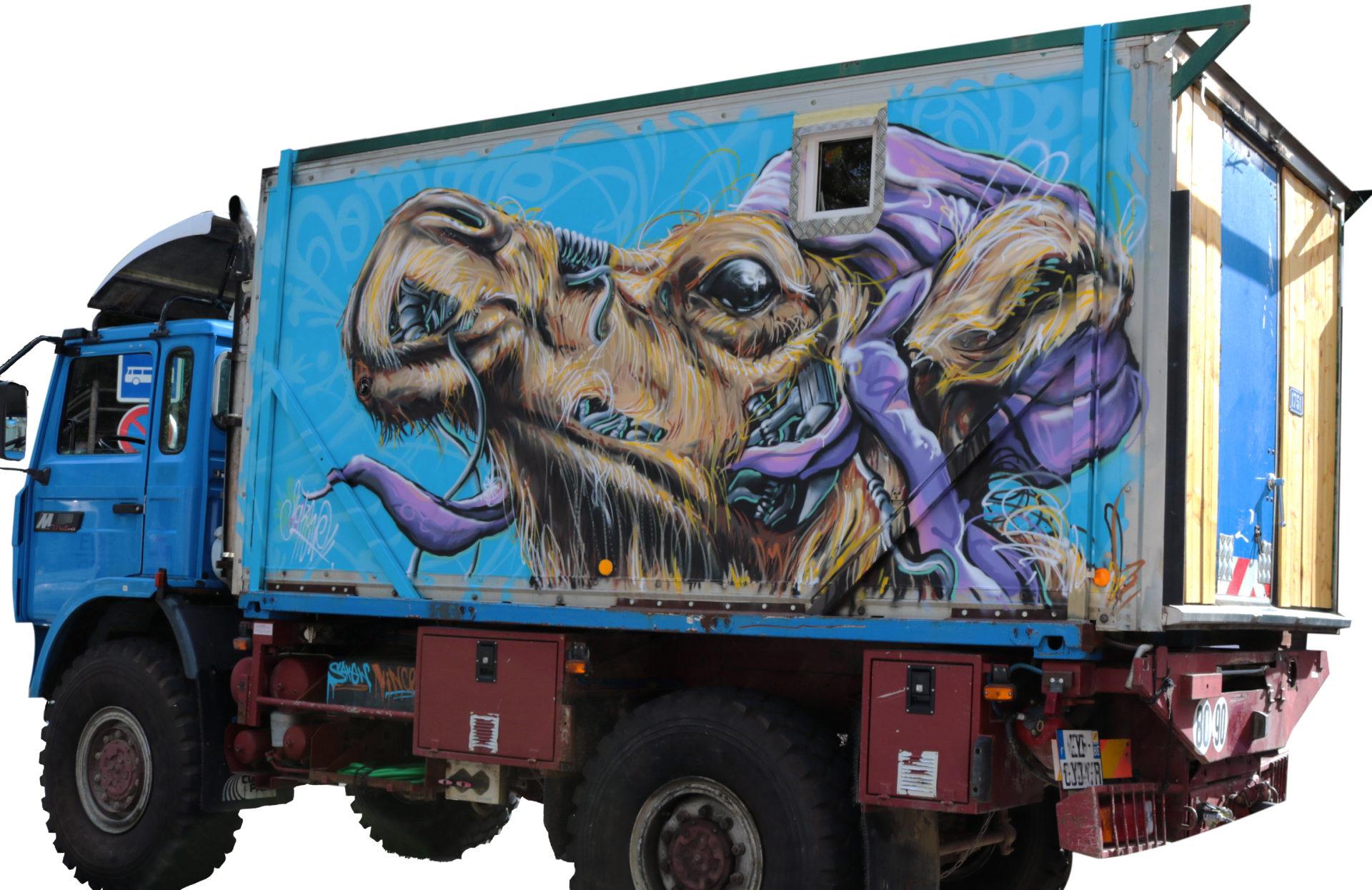 chameau camion peinture graffiti decoration couleurs